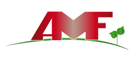 https://www.impresamancusoattilio.it/wp-content/uploads/2018/02/logo-AMF-foot-01.png